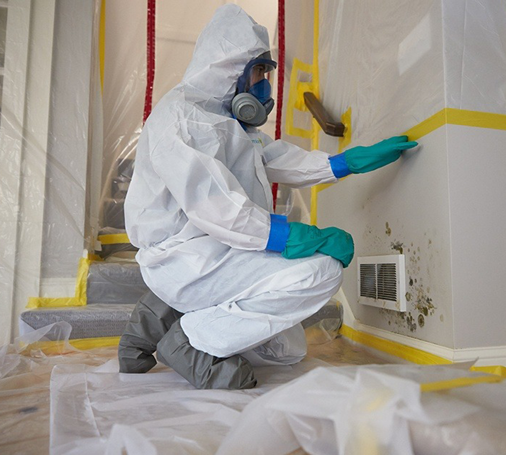 https://moldremoval-houston.com/wp-content/uploads/2020/11/mold-removal-technicians-houston-2.png